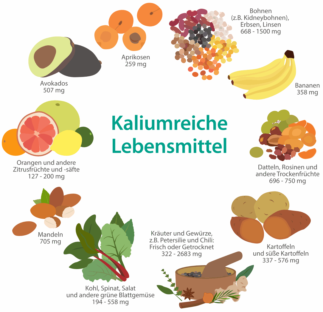 Kaliumreiche Kost gegen hohen Blutdruck - Herzlexikon..